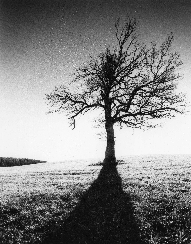 darkroom_3